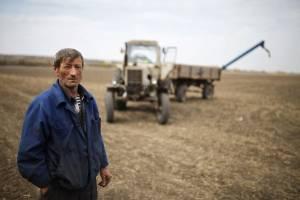 Брянцев позвали работать в сельское хозяйство на зарплаты ниже учительских