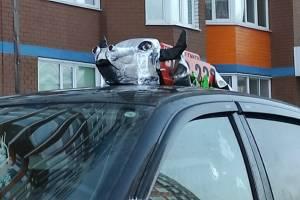 В Брянске таксист уложил быка на крышу машины