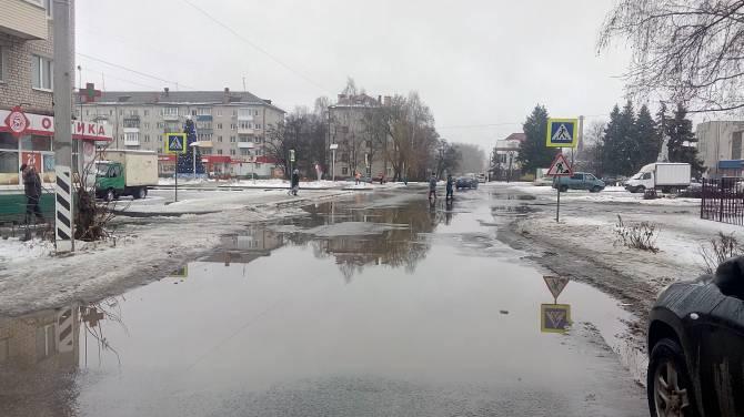 Брянцы попросили Путина разобраться с затопленной дорогой у «Лития»