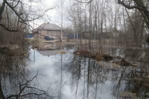 В брянских реках Десна и Болва стабилизировался уровень воды