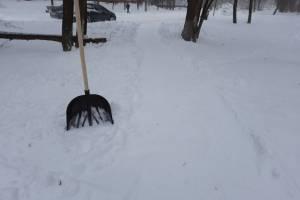 Жители Брянска начали скупать лопаты для расчистки снега