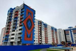 Брянский художник завершил работу над первым в городе муралом