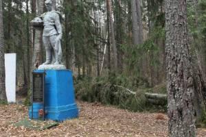 Партизанский мемориал под Брянском очистят от поваленных деревьев