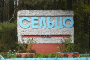 В Брянской области город Сельцо отмечает юбилей