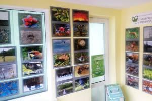 В заповеднике «Брянский лес» открылась фотовыставка о любви к природе