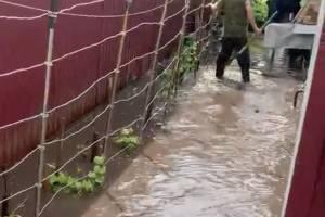 Под Брянском после сильного дождя утонули частные дома