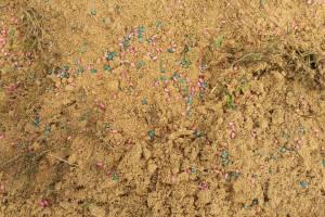 В Погаре усыпали песок крысиным ядом