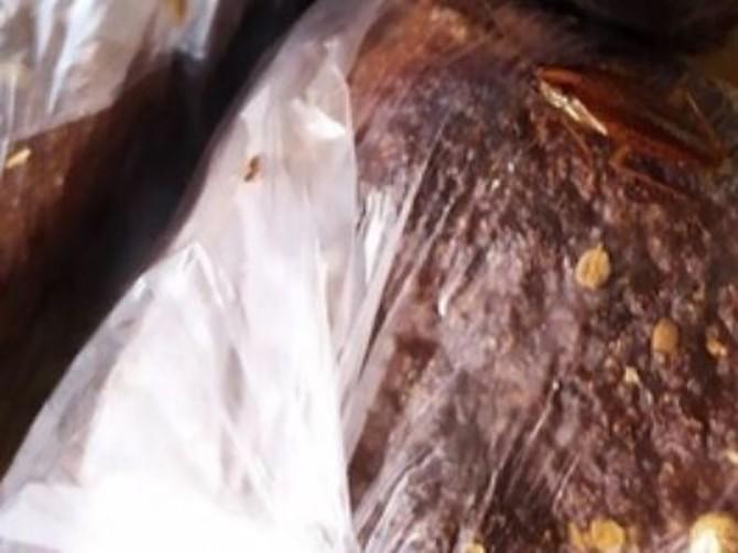 Брянцы заметили таракана в хлебном отделе супермаркета