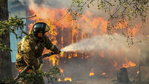 На Брянщине выгорело 72 гектара леса