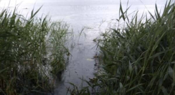 Под Стародубом утонул 63-летний  мужчина