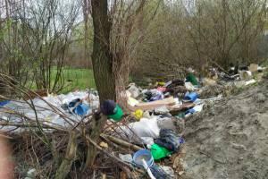 В Брянске у садового общества «Болва» появилась незаконная свалка