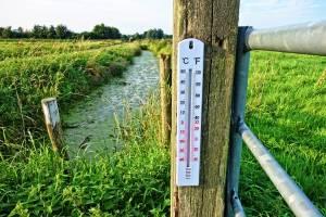 В Брянской области во вторник сохранится адская жара
