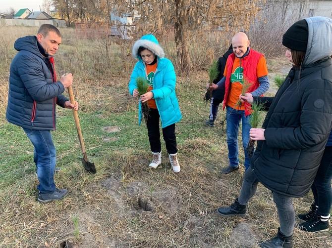 В Новозыбкове экологи высадили хвойную аллею