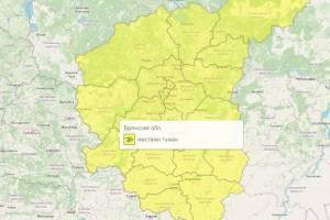 На Брянщине туман продлил желтый уровень погодной опасности