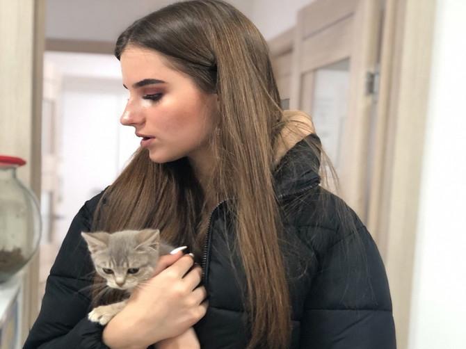 В Брянске на выставке «Забери меня домой» пристроили 13 кошек