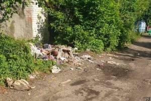 В Брянске жителей Чичеринки пугают разбросанные черепа животных