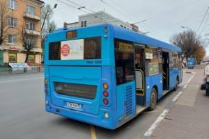 В Брянской области 90 автобусов оклеили световозвращателями