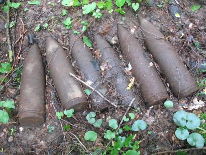 В Карачевском районе в лесу нашли 27 артиллерийских снарядов