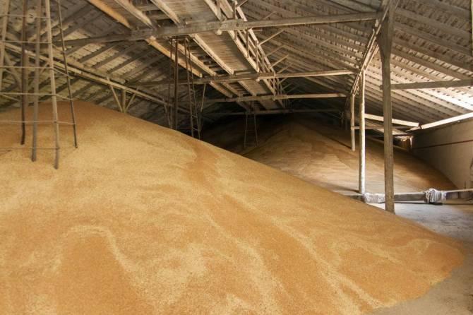Трубчевское сельхозпредприятие уличили в нарушениях при хранении зерна