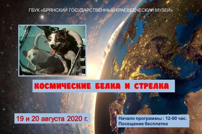 Брянцев пригласили на выставку «Космические Белка и Стрелка»