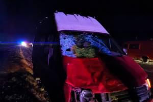 В Почепе устанавливают личность погибшей в жутком ДТП девушки