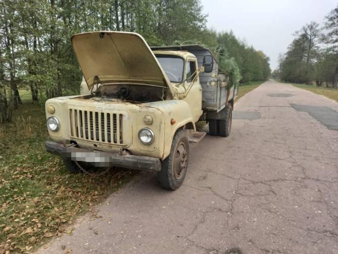 Под Климово поймали водителя без прав с 60 соснами