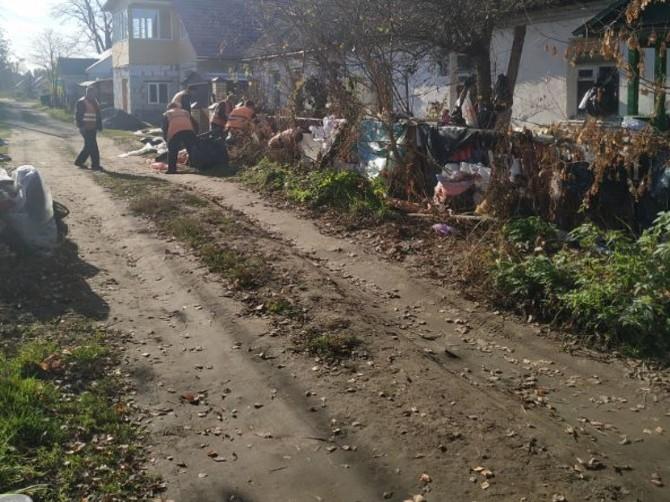 В Брянске дорожники нагрянули в жуткий дом с крысами