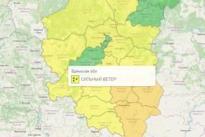 На Брянщине из-за сильного ветра объявили желтый уровень опасности
