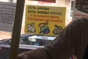 Безбилетников в брянских автобусах назвали «радужными» зайцами