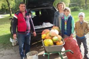 Брянцы поделились овощами с жителями зоопарка