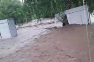 В Брянской области после ливня затопило деревню Алексеевку