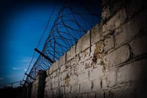 В Брянской области с начала года произошло больше 14 тысяч преступлений