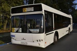 Для Брянска купят стоместные автобусы МАЗ за 291 миллион рублей