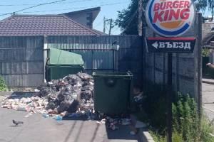В Брянске сняли на фото мусорный апокалипсис возле кафе «Burger King»