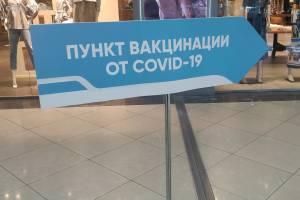 Власти пожелали привить от коронавируса 80% брянцев