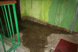 В Брянске после мощного ливня затопило многоэтажку на Красноармейской
