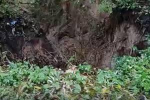 В брянском парке «Лесные сараи» появился гигантский провал