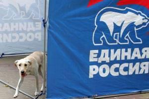 Брянцев призвали забрать персональные данные у «Единой России»