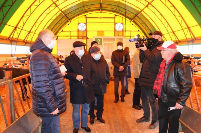 Депутаты Брянской облдумы присмотрелись к скотоместам