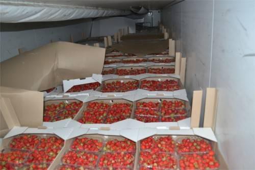 На брянском полигоне захоронили почти две тонны клубники
