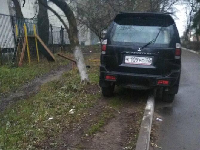 В Брянске сняли на фото парковку автохама на газоне