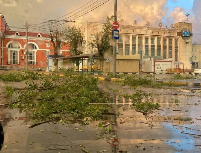 Площадь перед вокзалом Брянск-Орловский завалило буреломом