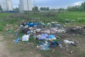 В Брянске жители частного сектора на Новостройке устроили свинарник