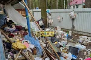 В Брянском районе рассказали о живущих в куче мусора людях