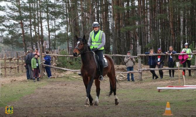 В Брянске назвали победителей турнира по конному туризму