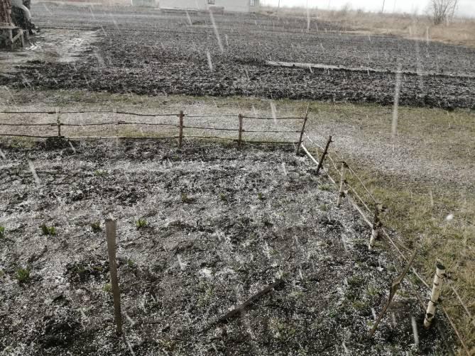 В Выгоничах 14 марта неожиданно выпал град