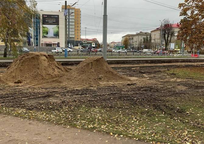 В Брянске варварски уничтожили высаженные молодые деревья