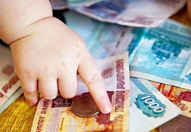 Брянца осудили за 2-миллионную аферу с материнскими капиталами