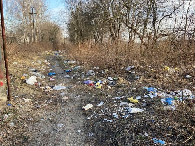 Брянцы устроили свалку возле железной дороги на Володарке