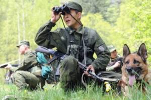 На брянской границе за неделю поймали около 200 нелегалов